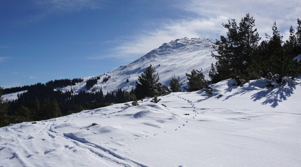 vitoša, planina, u bugarskoj, 8 zanimljivih stvari